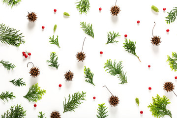 Collection of Christmas plants top view flat lay
