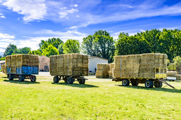 Hay and straw charged on trailer