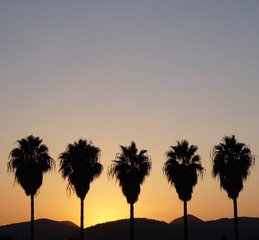Sunset Ibiza