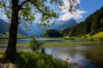 Lake in Lenk Switzerland