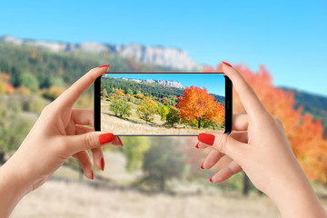 Girl taking picture with phone of colorful autumn trees