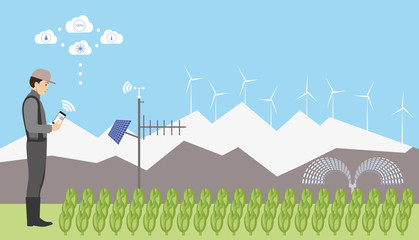 Wall Mural - Internet of things in agriculture. Smart farm for growing Chinese cabbage with wireless control.  Vector illustration.