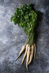 Bundle of fresh organic parsnip with haulm over gray texture background. Top view with space