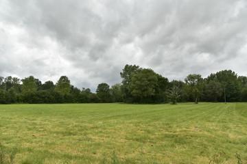 Prairie et bois sous un ciel bas à flocons avant l'arrivée d'une averse intense ,au Périgord Vert