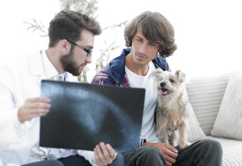 veterinarian showing an x-ray to the owner of the dog.