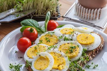 Ein belegtes Vollkornbrot mit hartgekochtem Ei und viel Kresse