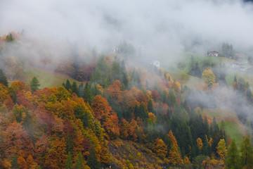 Kolorowy jesień krajobraz w górskiej wiosce, ranek w Dolimitach - 171236072