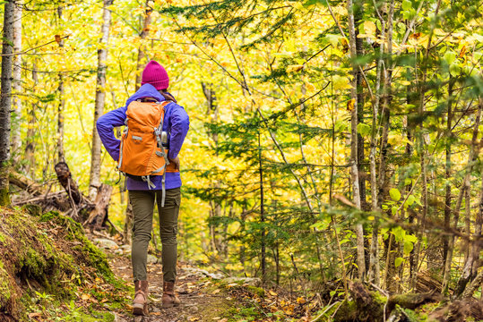 Autumn hike backpacker lifestyle woman walking on trek trail in forest outdoors with yellow leaves foliage. Fall outdoor activity girl with bacpack and cold season gear hiking outside.