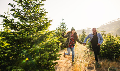 Young couple enjoying a winter day between Christmas trees.