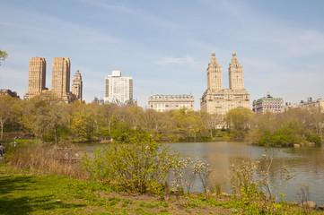 Primavera a New York