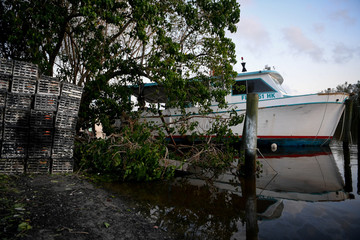 A fishing boat rests in a tree in Everglades City