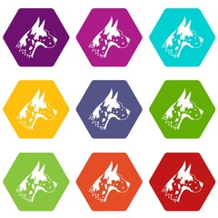 Great dane dog icon set color hexahedron