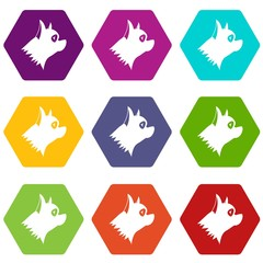 Pinscher dog icon set color hexahedron