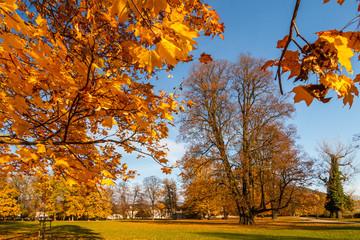 autumn castle park Budatin near by Zilina, Slovakia, central Europe Zilina