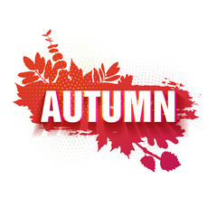 Template for the design of a horizontal banner for the autumn season. Sign with text fall on a red background with a decor of a silhouette of maple leaves and oak. The natural label. Vector