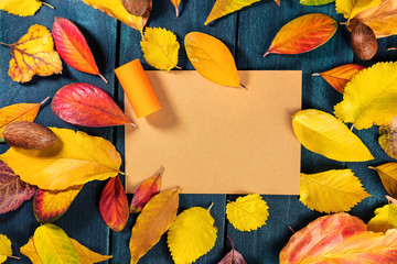 Vibrant autumn wine design template with cork and leaves