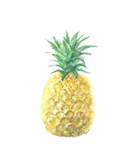 Single picture of pineapple