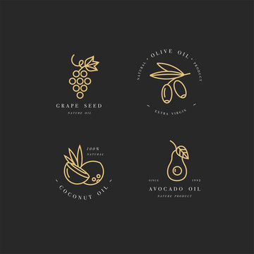 Vector set of packaging design templates and emblems in linear style - beauty and cosmetics oils