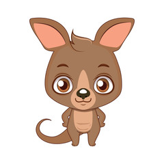 Cute stylized cartoon kangaroo illustration ( for fun educational purposes, illustrations etc. )