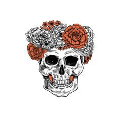 Vintage botanical skull illustration. Floral  human skeleton. Vector illustration
