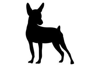 vector, isolated silhouette of a dog is standing