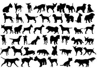 vector, isolated  silhouette of a dog collection