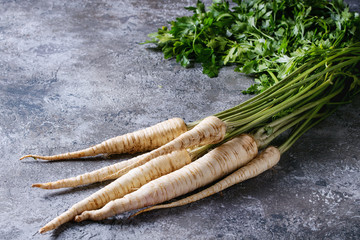 Bundle of fresh organic parsnip with haulm over gray texture background.