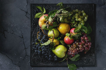 Variety of autumn fruits ripe organic apples, three kind of grapes, pears with leaves on metal ornate tray over dark texture background. Top view with space