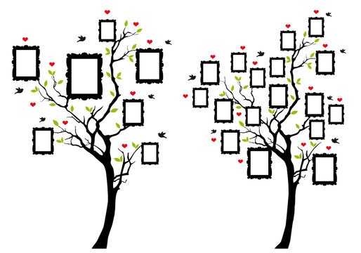 family tree with photo frames, vector