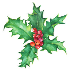 Holly twig (ilex). Winter Holiday, traditional Christmas decoration for greeting card, invitation, textile. Noel, New Year. Watercolor hand drawn painting illustration isolated on white background.