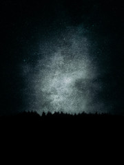 forest in the mountain at night with grungy textures