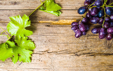 Purple grape on rustic wooden background