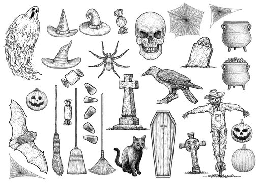 Halloween collection illustration, drawing, engraving, ink, line art, vector