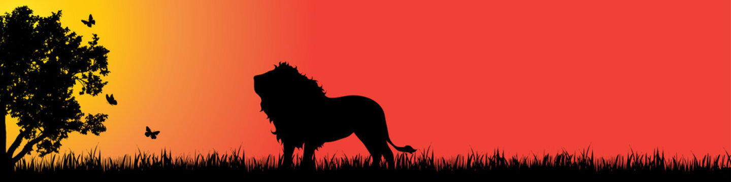 Vector silhouette of lion in nature at sunset.