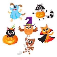 Set of cute funny animal characters dressed in Halloween costumes, cartoon vector illustration isolated on white background. Set of animal characters dressed as ghost, witch, mummy celebrate Halloween
