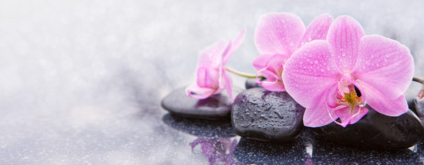 Photo sur Plexiglas Orchidée Pink orchid and spa stones isolated.