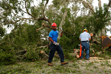 A worker with the St. Marys department of public works carries a tree limb while working to clear the street after Hurricane Irma passed through in St Marys