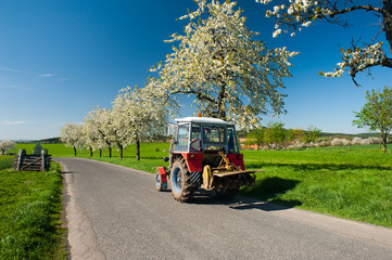 Tractor in the Spring