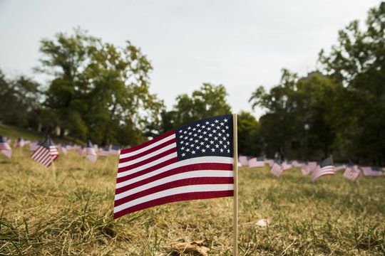 Flags for 9/11 victims on anniversary of September 11, 2001 terrorist attacks in the United States.
