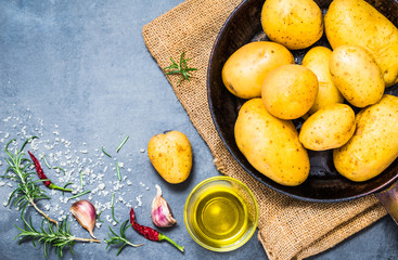 Raw potatoes and herbs, spices on dark background copy space.