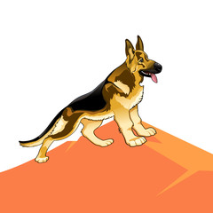 Dog pedigree (german shepherd) on a hill, cartoon on a white background.