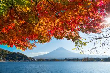Fototapete - Berg Fuji im Herbst, Kawaguchiko, Präfektur Yamanashi, Japan
