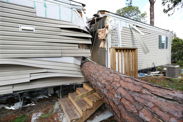 An uprooted tree that slashed a trailer in half in the wake of Hurricane Irma is pictured at a mobile home park in Kissimmee