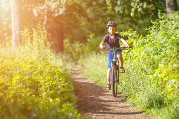 Small boy in protective helmet riding bicycle in park on summer day