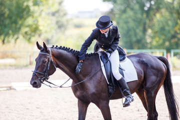 Young elegant rider woman patting her bay horse after dressage test on equestrian competition