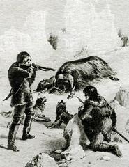 James Clark Ross (1800–1862), british polar explorer, hunting muskox