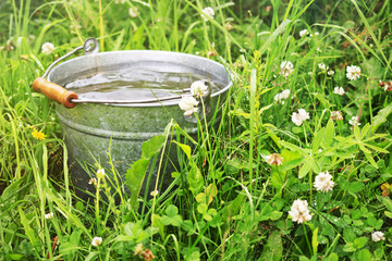 Bucket with rain water
