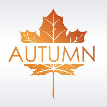 Modern style autumn logo design with fall colors and a maple leaf.