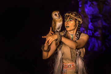 Beautiful witch with the white owl.
