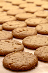 Making of Peanut Butter Cookies